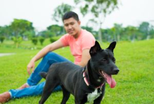 Dog and owner in park